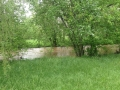 Swollen creek. There was a lot of rain.