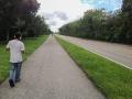 Bike path along bus only road